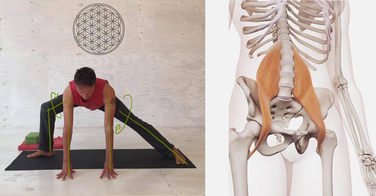 8 effektive Yoga-Übungen für offene Hüften