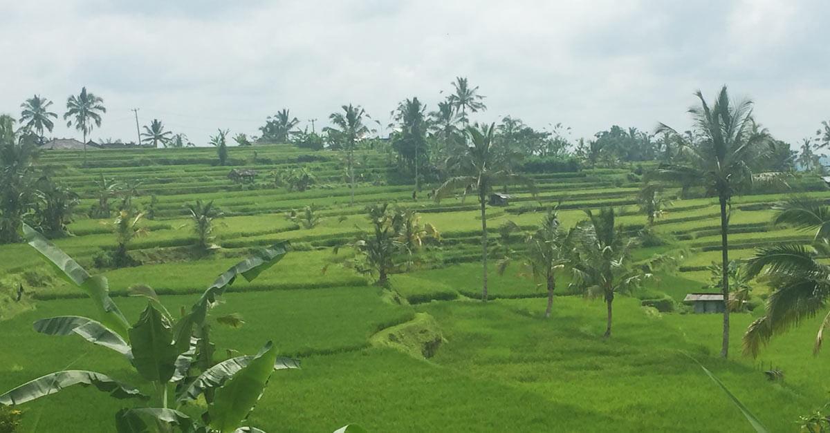 Auszeit Bali
