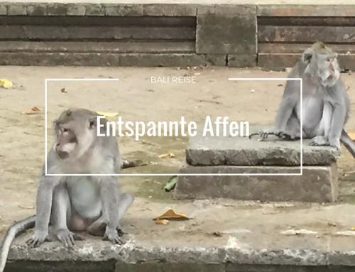 Bali Teil 2: Nichts Tun, entspannte Affen und Ursachenforschung