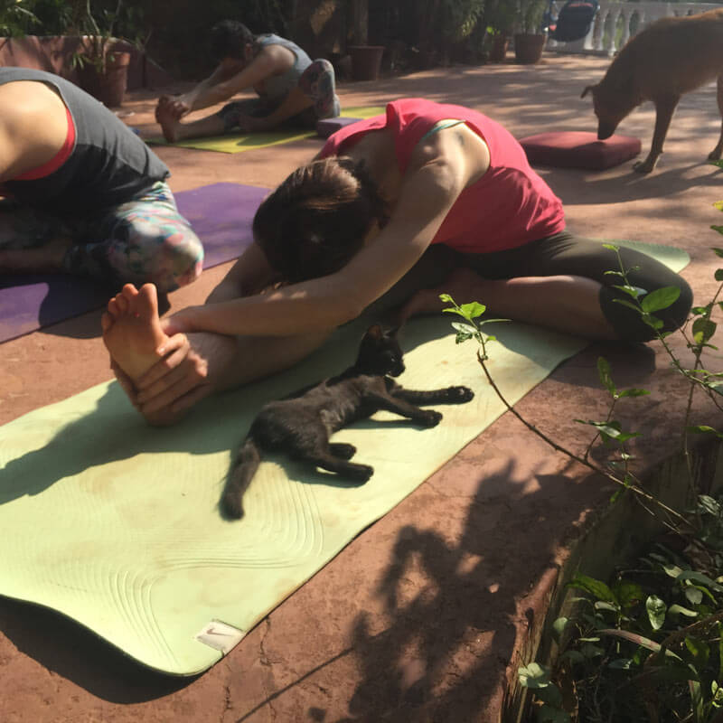 2016_02_goa_reise_yoga_02_1