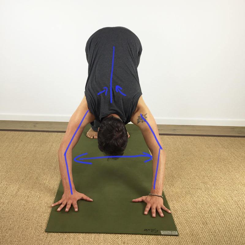 Yoga-Übungen für Schultern: AMS – Arme leicht beugen und wieder strecken