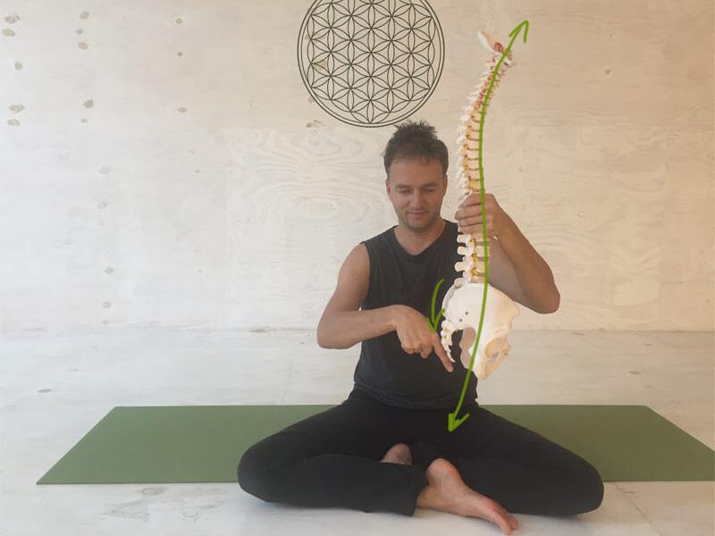 Yoga-Übungen gegen Rückenschmerzen - Länge in der Lendenwirbelsäule