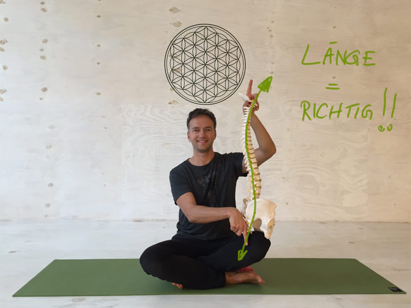 Yoga-Übungen gegen Rückenschmerzen - Länge in der Wirbelsäule