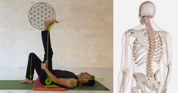 Yoga-Übungen gegen Rückenschmerzen