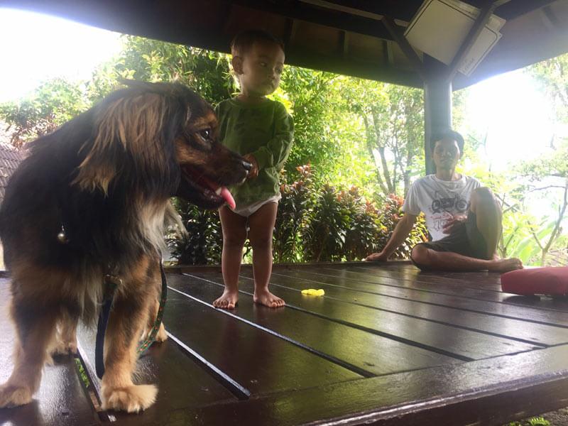 Bali Auszeit - relaxtes Leben