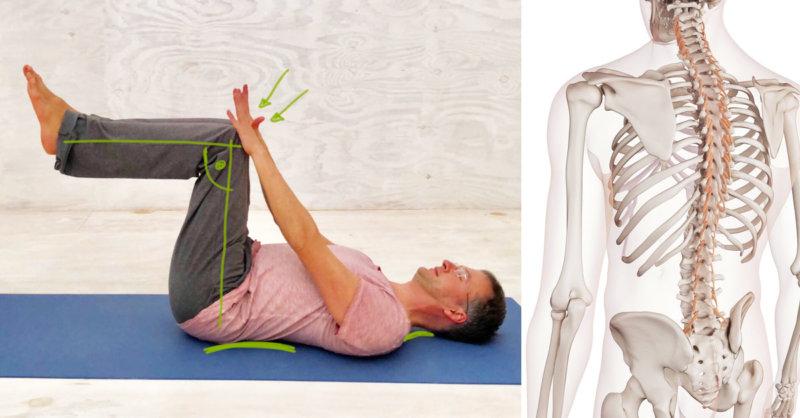 Rückenschmerzen unterer Rücken vermeiden
