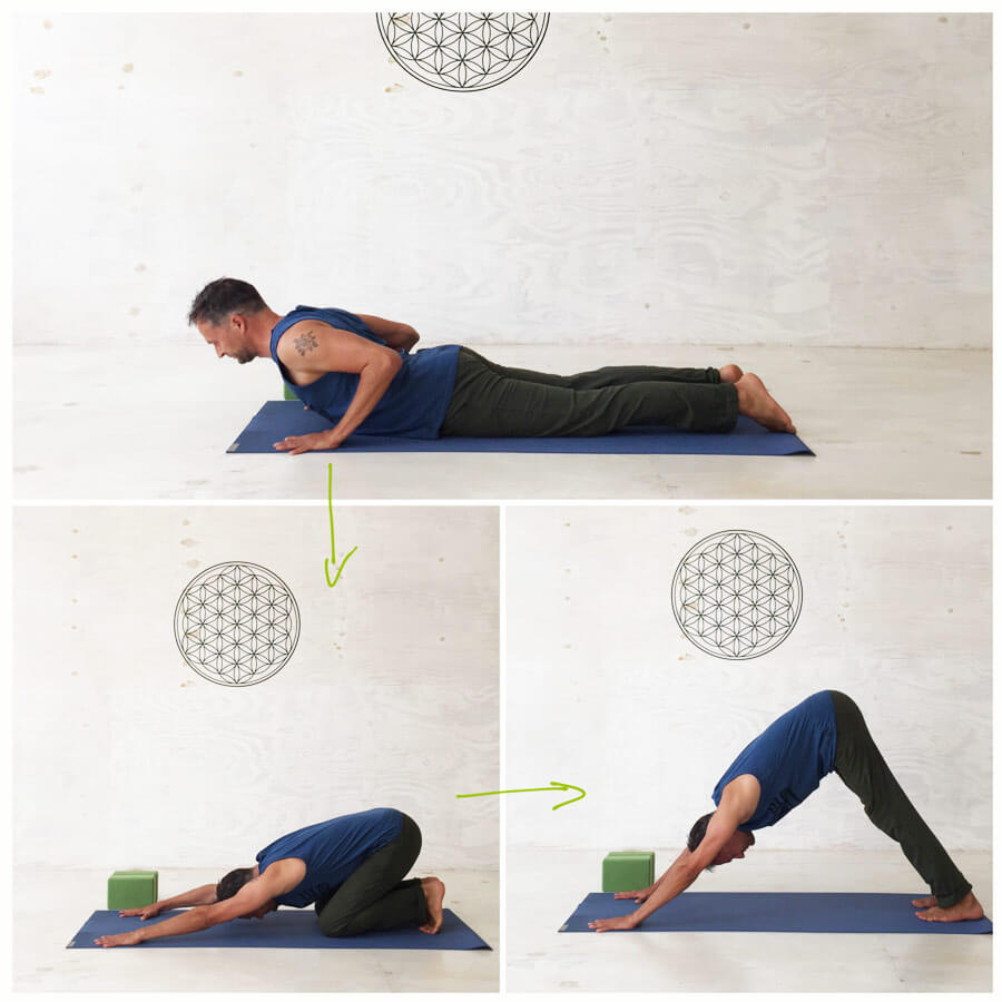 Yoga Sonnengruß für Yoga-Anfänger