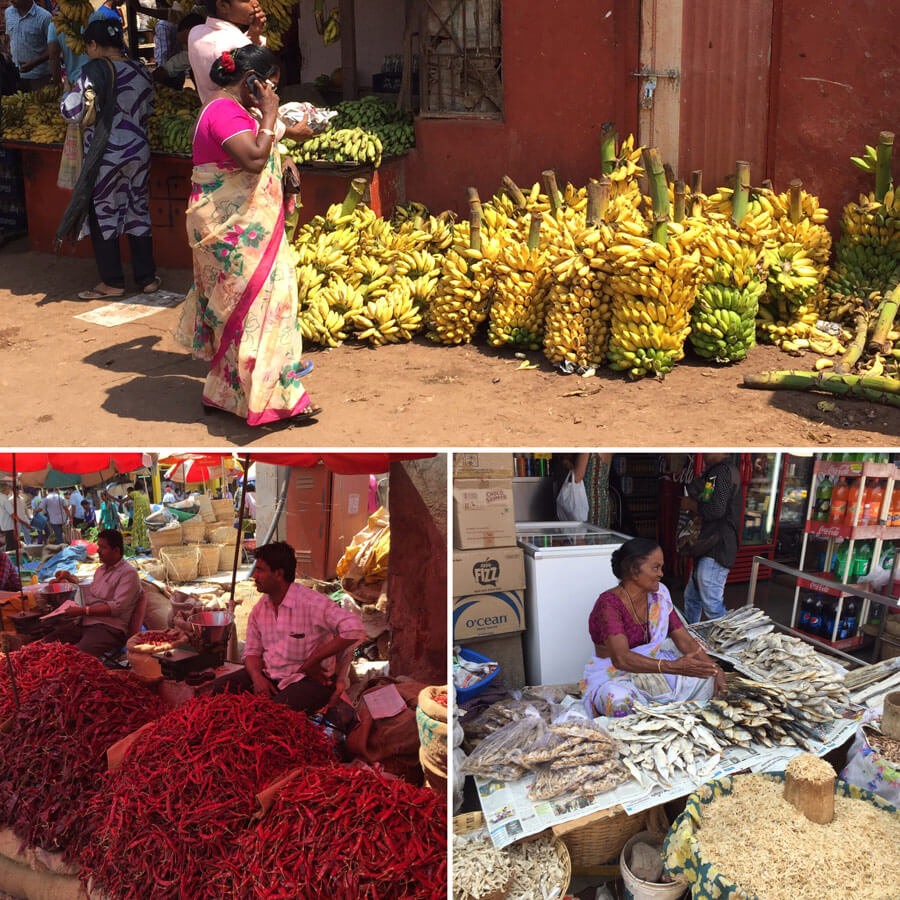 Goa Yoga Reise - Natur Markt