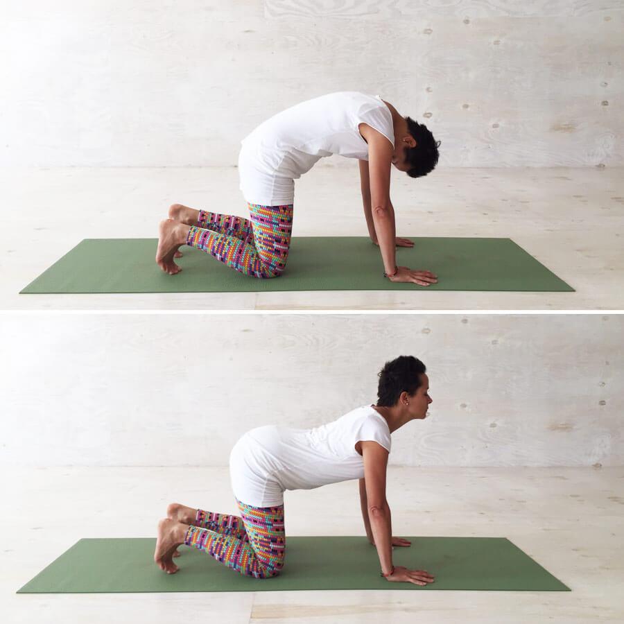 Yoga Übungen in der Schwangerschaft: Katze Kuh