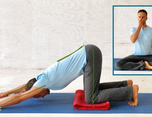 Mit Yoga Stress vermeiden – 8 Yoga Übungen zur Beruhigung