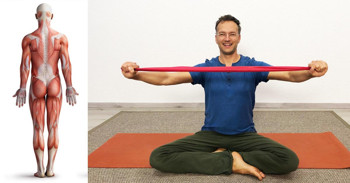 Hatha Yoga Musklen dehnen