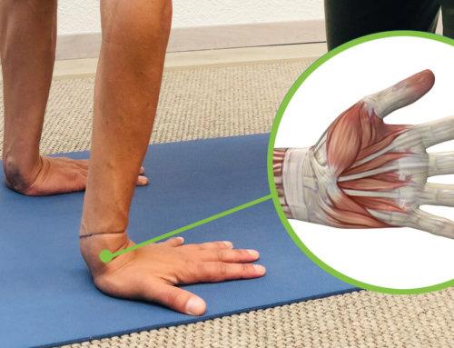 Yoga Handgelenke SPEZIAL – Übungen und Tipps gegen Schmerzen in den Yoga-Übungen
