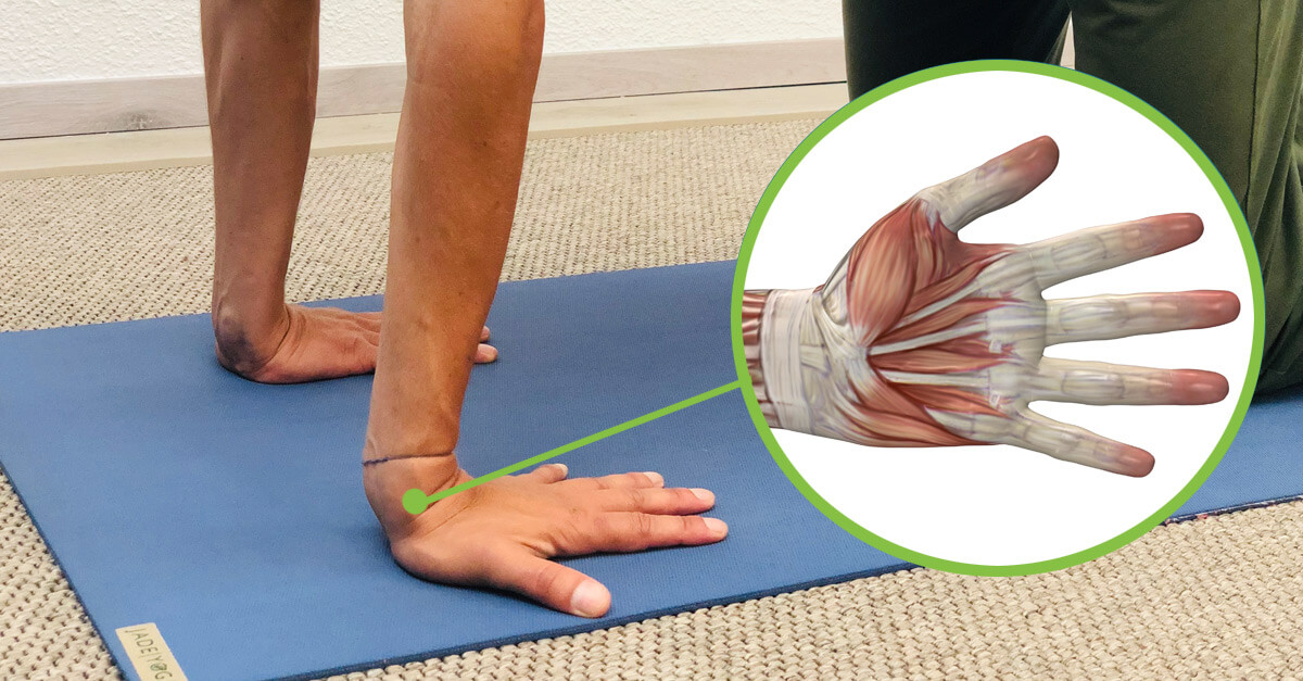 Yoga Handgelenke
