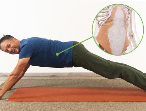 Yoga Core – das perfekte Bauchmuskeltraining inkl. Übungen, Tipps und Videos für dich