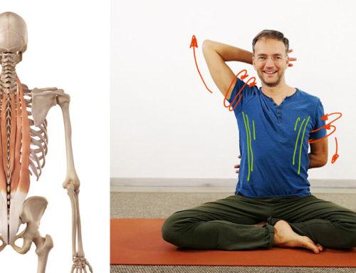 Yoga gegen Rundrücken – Tipps, Übungen und Videos für eine aufgerichtete Körperhaltung