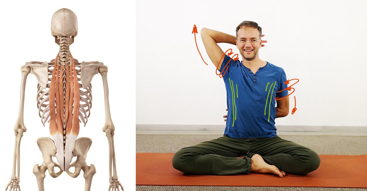 Yoga gegen Rundrücken