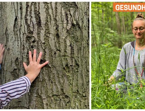 Waldbaden – Hilfe gegen Stress und Unruhe (inkl. Übungen)
