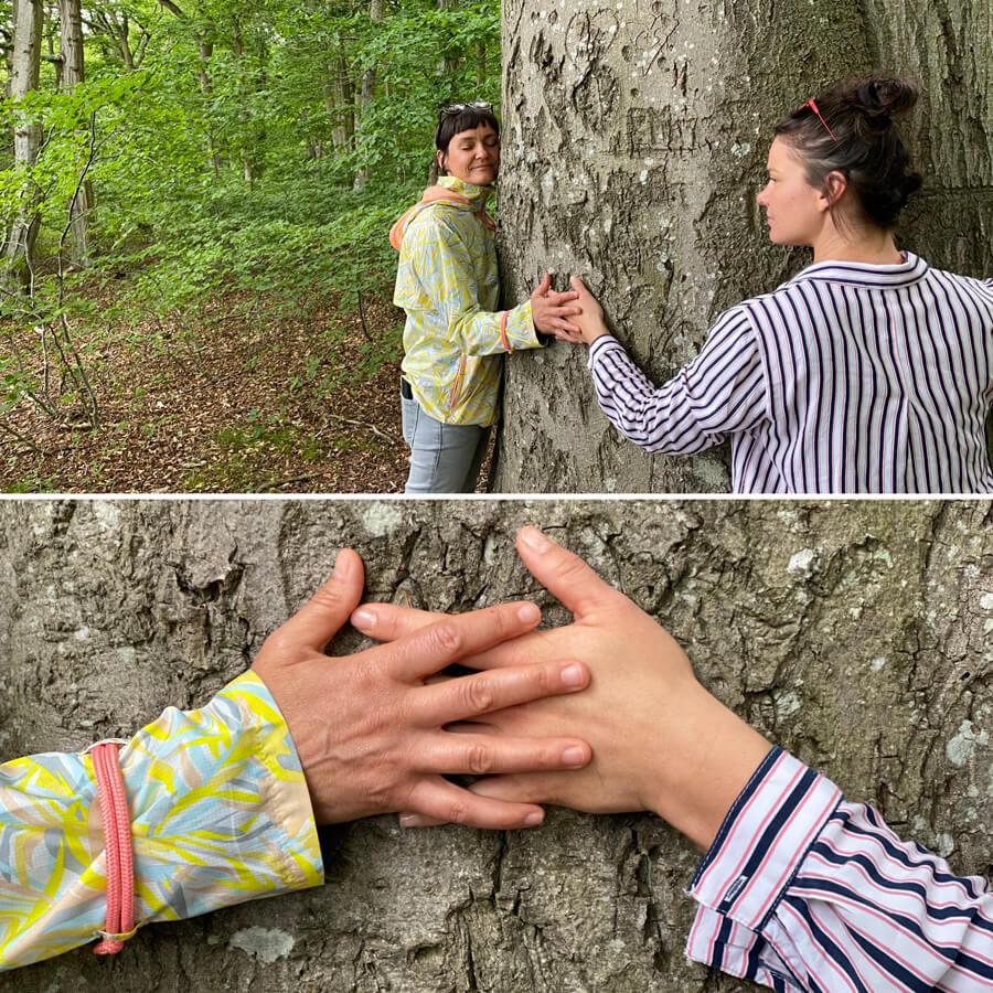 Waldbaden Baum umarmen