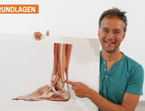 Yoga Füße – Grundlagen für gesunde Füße