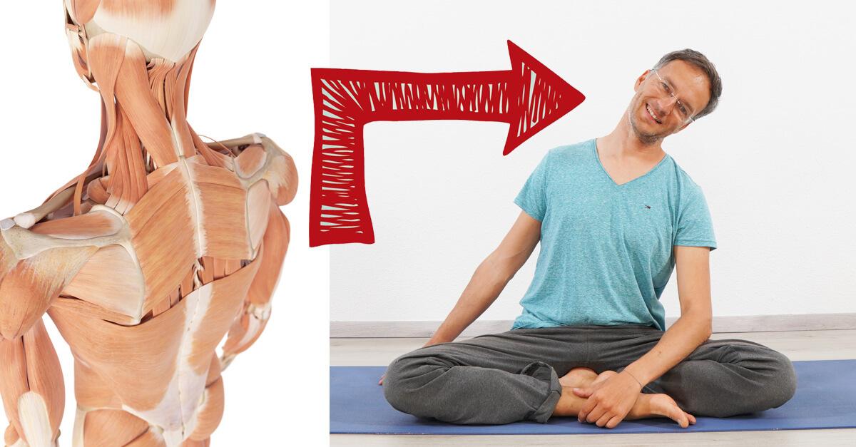 Nackenverspannungen loesen mit yoga