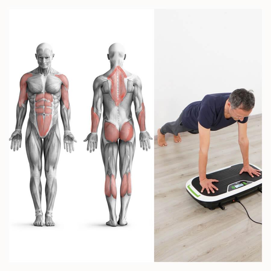 Vibrationsplatte Übungen