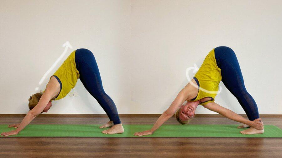 Kapha Yoga Twist Hund