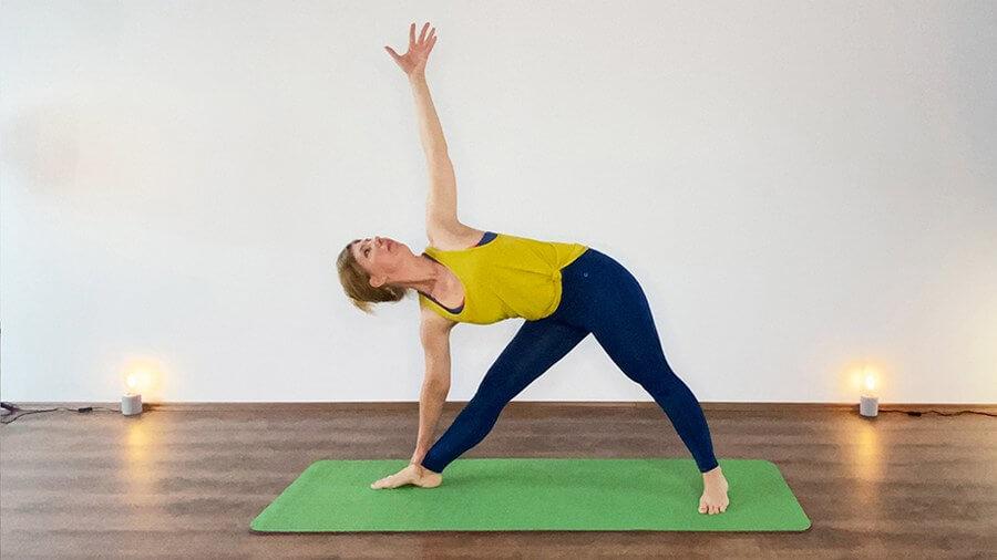 Pitta Yoga Dreieck Yogabasics